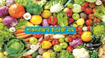 Vegetables Name in English Bangla